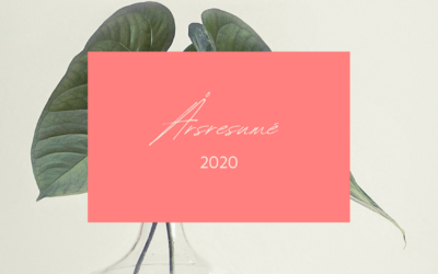 Mitt 2020 – en resumé